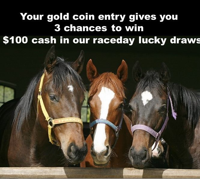 Ladies Day Lucky Draws