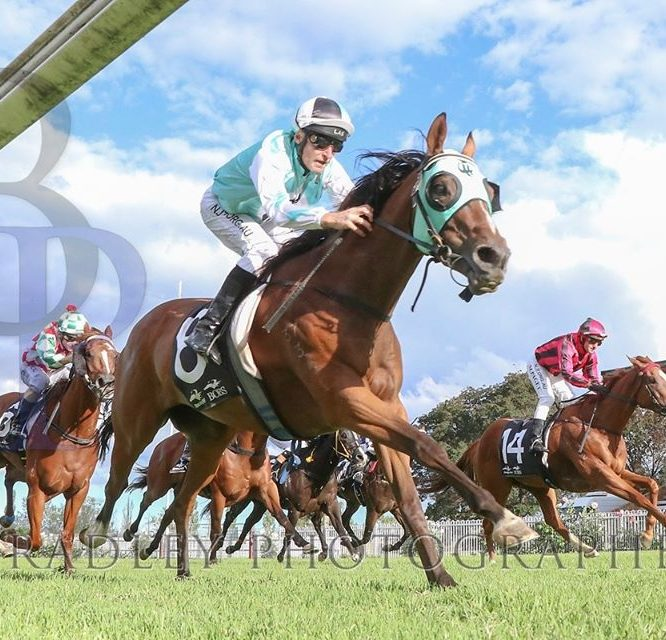 Al Foran trained RUBY TWO SHOES just misses