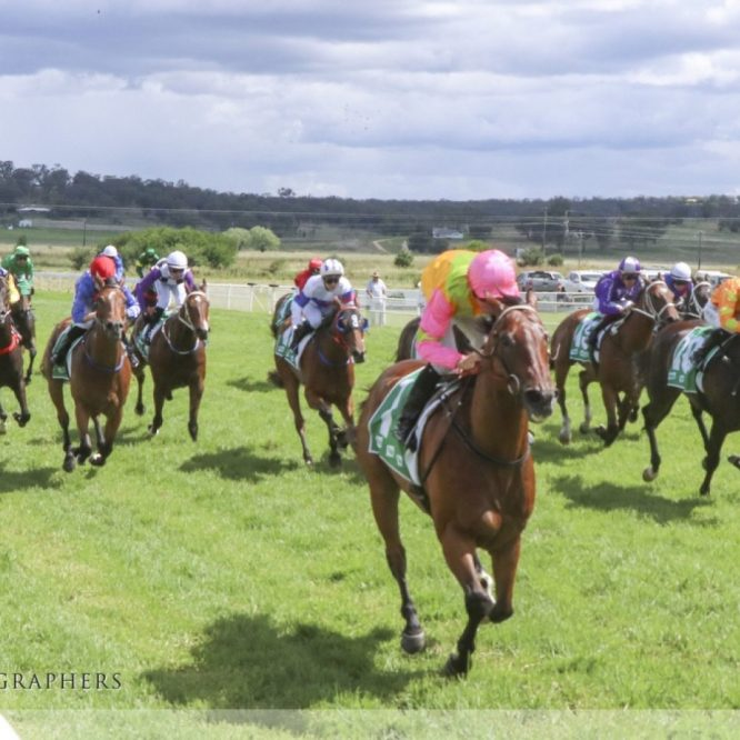 Saturday 16th October Race Meeting will go ahead