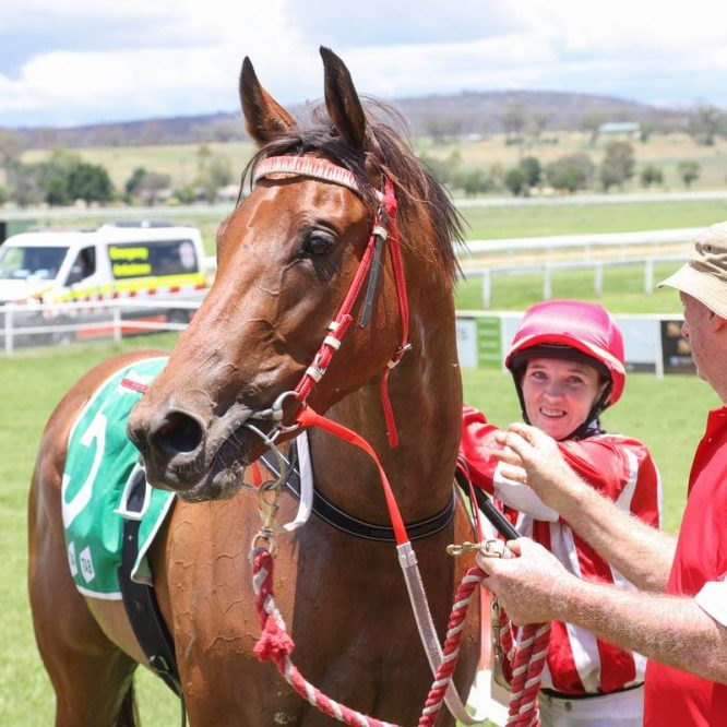 Inverell Trainers continued their success at the Walcha Racing Carnival