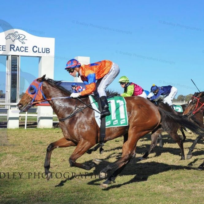 Fantastic day at Moree for the Inverell Trainers